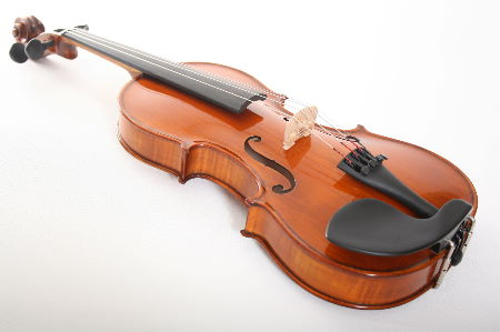how to buy a professional violin